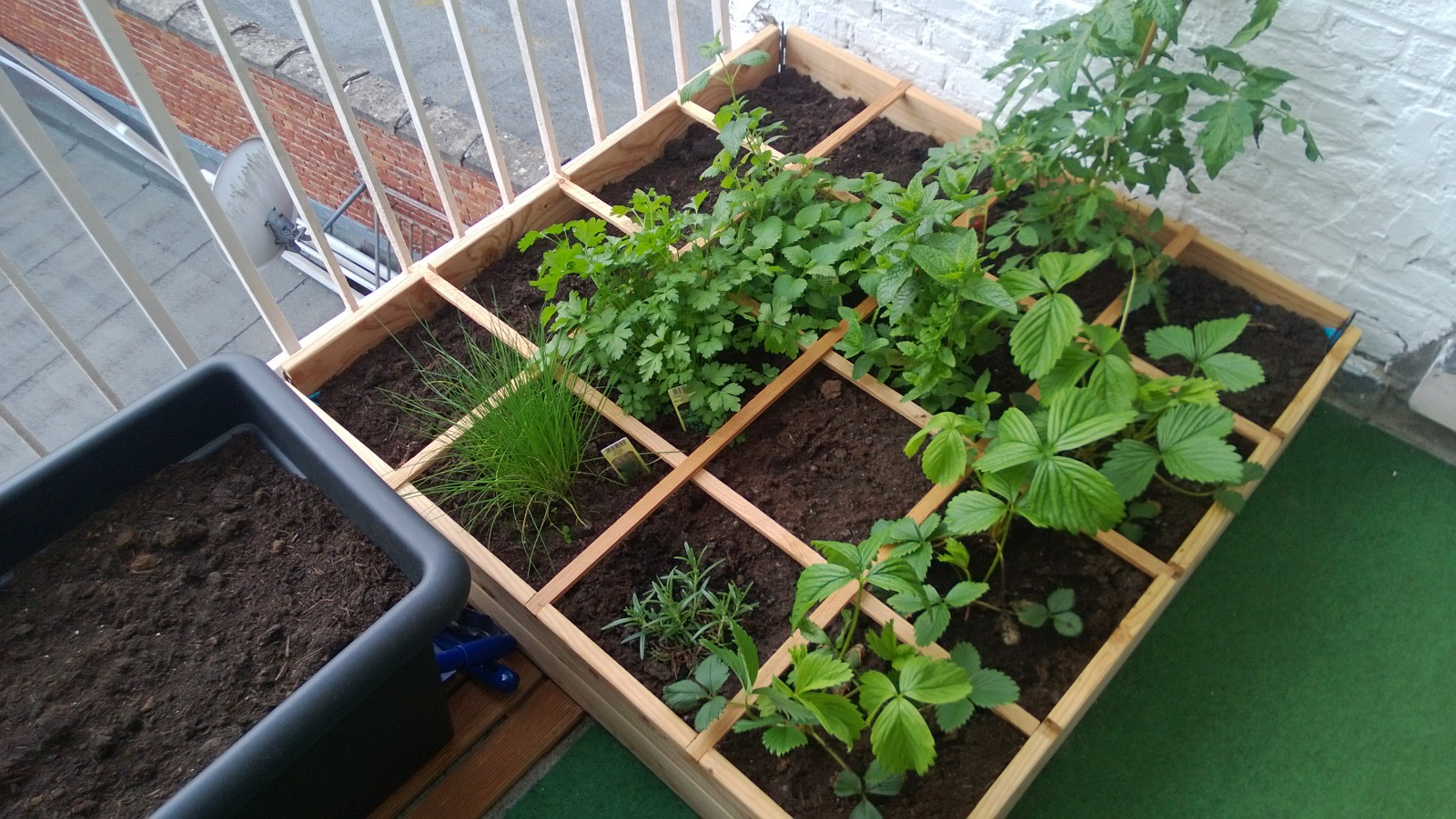 bio moestuin in de buurt workshop de vierkante meter tuin